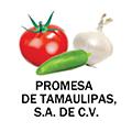 Promesa Tamaulipas